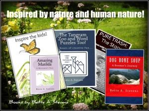 BAS Books INSPIRED 2015 (2)